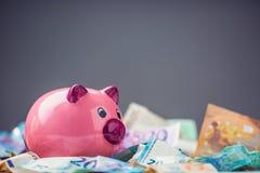 Ευρο- ευρο- νόμισμα τραπεζογραμματίων χρημάτων ευρο- και piggy τράπεζα Στοκ εικόνες με δικαίωμα ελεύθερης χρήσης