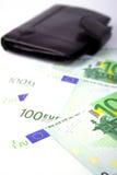ευρο- πορτοφόλι δέρματο&sigm Στοκ Εικόνες