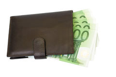 ευρο- πορτοφόλι Στοκ Εικόνα