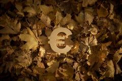 Ευρο- σύμβολο νομίσματος στα φύλλα φθινοπώρου στον αργά το βράδυ ήλιο στοκ εικόνα με δικαίωμα ελεύθερης χρήσης
