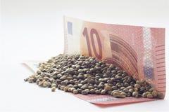 Ευρο- τραπεζογραμμάτιο τα δέκα με τους σπόρους μιας κάνναβης Στοκ φωτογραφίες με δικαίωμα ελεύθερης χρήσης