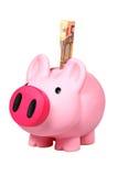 ευρο- piggy τραπεζογραμματίων τραπεζών Στοκ εικόνα με δικαίωμα ελεύθερης χρήσης