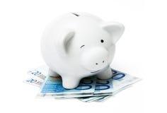ευρο- piggy τραπεζών Στοκ εικόνα με δικαίωμα ελεύθερης χρήσης