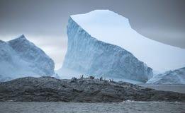 Ευρυγώνιος πυροβολισμός μιας ομάδας penguins στις πέτρες περι:βάλλω από τα παγόβουνα και το νερό Andreev Στοκ Φωτογραφία