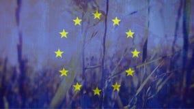Ευρωπαϊκή σημαία με ειρηνικό cornfield στο υπόβαθρο φιλμ μικρού μήκους