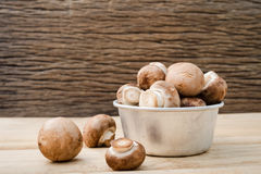 Ευρωπαϊκή σούπα μανιταριών έννοιας τροφίμων με champignon την οργάνωση με το καφετί υπόβαθρο Champignon μανιτάρι ή μανιτάρι κουμπ στοκ εικόνες με δικαίωμα ελεύθερης χρήσης