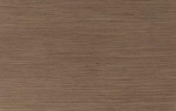 Ευρωπαϊκό ακτινωτό ζουμ ξύλων καρυδιάς Στοκ Εικόνα