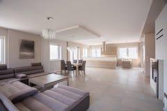 Ευρύχωρο δωμάτιο με τον καναπέ σουέτ στοκ εικόνες με δικαίωμα ελεύθερης χρήσης