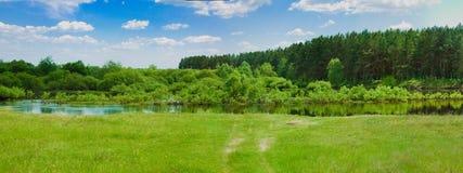Ευρύ πανόραμα ενός ποταμού και του δάσους στοκ εικόνα με δικαίωμα ελεύθερης χρήσης