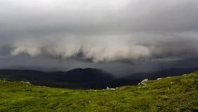 Ευρύ πανόραμα θερινών βουνών πριν από τη καταιγίδα Τα σκοτεινά σύννεφα βροχής χαμηλά πέρα από την πράσινη χλοώδη δύσκολη κοιλάδα  στοκ εικόνες