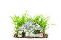 Ευρώ και δολάρια τραπεζογραμματίων με το σπίτι στο νέο πράσινο growi χλόης Στοκ Εικόνες