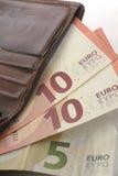 Ευρώ και πορτοφόλι Στοκ εικόνα με δικαίωμα ελεύθερης χρήσης
