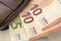 Ευρώ και πορτοφόλι Στοκ Εικόνες
