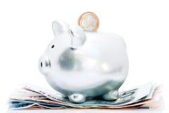ευρώ τραπεζών piggy Στοκ Εικόνα