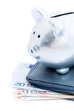 ευρώ τραπεζών piggy Στοκ Εικόνες