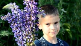 Ευτυχές αγόρι παιδιών με την ανθοδέσμη των άγριων λουλουδιών στα χέρια του που απολαμβάνεται μέχρι το καλοκαίρι χαριτωμένο αγόρι  απόθεμα βίντεο