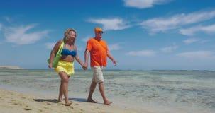 Ευτυχές ανώτερο ζεύγος στις θερινές διακοπές απόθεμα βίντεο