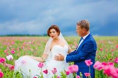 Ευτυχές γαμήλιο ζεύγος στο ρόδινο τομέα παπαρουνών Στοκ φωτογραφίες με δικαίωμα ελεύθερης χρήσης