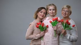 Ευτυχές γκρίζο υπόβαθρο τουλιπών εκμετάλλευσης μητέρων, κορών και για απόθεμα βίντεο