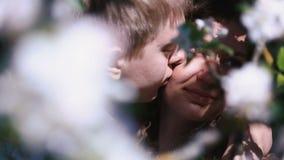 Ευτυχές εμπαθές ζεύγος που φιλά την άνοιξη τον οπωρώνα κερασιών με τα μέρη των άσπρων λουλουδιών απόθεμα βίντεο