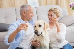 Ευτυχές ζεύγος με τη σαμπάνια κατανάλωσης σκυλιών κατοικίδιων ζώων τους Στοκ Φωτογραφία