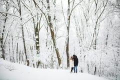 Ευτυχές ζεύγος που έχει τη διασκέδαση υπαίθρια στο πάρκο χιονιού εξωτικός γίνοντας ωκεάνιος χιονάνθρωπος άμμου παραλιών ανασκόπησ στοκ εικόνα με δικαίωμα ελεύθερης χρήσης