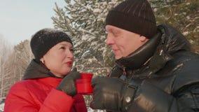 Ευτυχές ζεύγος που πίνει το καυτό τσάι ενώ χειμερινός περίπατος χιονώδη δασικό στενό σε επάνω απόθεμα βίντεο