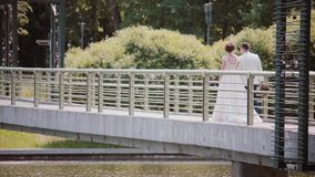 Ευτυχές ζεύγος που περπατά σε μια γέφυρα στη ημέρα γάμου Πίσω άποψη της όμορφων νύφης και του νεόνυμφου, που κρατά τα χέρια stead φιλμ μικρού μήκους