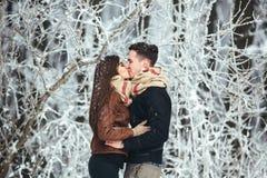 Ευτυχές ζεύγος στο πάρκο χιονιού Στοκ Εικόνες