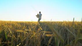Ευτυχές ζεύγος υπαίθρια που έχει τη διασκέδαση, που περπατά στον τομέα σίτου στη φύση ηλιοβασιλέματος ρομαντική ευτυχής οικογένει απόθεμα βίντεο