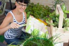Ευτυχές κιβώτιο ζωγραφικής γυναικών χαμόγελου για τα λουλούδια πράσινα δοχεία λουλου&del Στοκ εικόνα με δικαίωμα ελεύθερης χρήσης