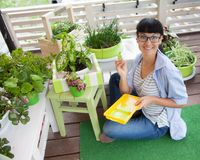 Ευτυχές κιβώτιο ζωγραφικής γυναικών χαμόγελου για τα λουλούδια πράσινα δοχεία λουλου&del Στοκ Εικόνες