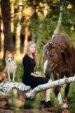 Ευτυχές κορίτσι με το σκυλί της αλόγων και κόλλεϊ συνόρων στοκ εικόνες με δικαίωμα ελεύθερης χρήσης