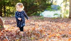 Ευτυχές κορίτσι μικρών παιδιών που παίζει έξω το φθινόπωρο Στοκ Φωτογραφία