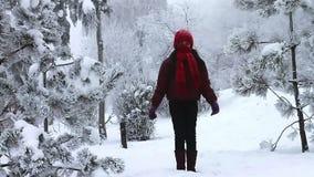 Ευτυχές κορίτσι που πηδά στο χιόνι απόθεμα βίντεο