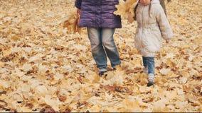 Ευτυχές μικρό κορίτσι με τα φύλλα φθινοπώρου λακτίσματος μητέρων της στο πάρκο απόθεμα βίντεο