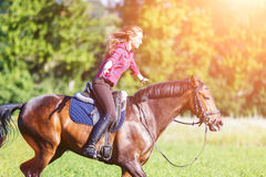 Ευτυχές νέο άλογο οδήγησης γυναικών στην ηλιόλουστη θερινή ημέρα Στοκ Εικόνες