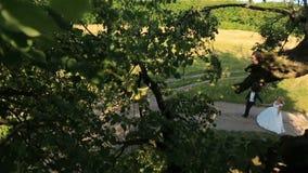 Ευτυχές νέο ελκυστικό ζεύγος που περπατά στον πράσινο θερινό δασικό μήνα του μέλιτος στην επαρχία Τοπ όψη απόθεμα βίντεο
