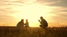 Ευτυχές οικογενειακό παιχνίδι με την κόρη τους στις ακτίνες του ήλιου Παιχνίδι Mom και μπαμπάδων με το παιδί στο πάρκο στο ηλιοβα απόθεμα βίντεο