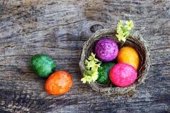 Ευτυχές Πάσχα! Μια φωλιά Πάσχας με τα ζωηρόχρωμα αυγά Πάσχας και primroses Στοκ Φωτογραφίες