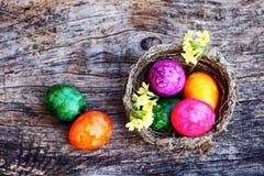 Ευτυχές Πάσχα! Μια φωλιά Πάσχας με τα ζωηρόχρωμα αυγά Πάσχας και primroses Στοκ Εικόνες