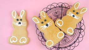 Ευτυχές Πάσχα υπερυψωμένο με τα μπισκότα και την καραμέλα λαγουδάκι Πάσχας σε έναν ξύλινο πίνακα απόθεμα βίντεο