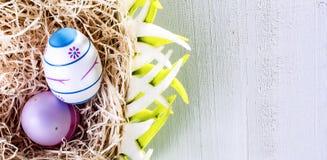 Ευτυχές Πάσχα - χρωματισμένα αυγά - έκπληξη και ειρήνη στοκ φωτογραφία με δικαίωμα ελεύθερης χρήσης