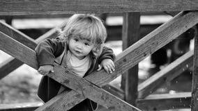 Ευτυχές παιδί που έχει τη διασκέδαση Αγοράκι πίσω από τον ξύλινο φράκτη Στοκ φωτογραφίες με δικαίωμα ελεύθερης χρήσης