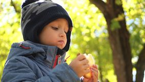 Ευτυχές παιδί που στηρίζεται στο πάρκο φθινοπώρου Μικρό παιδί που τρώει το ψωμί σε ένα πικ-νίκ φιλμ μικρού μήκους