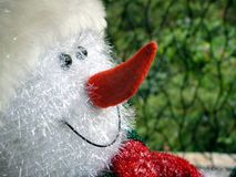 ευτυχές παιχνίδι χιονανθ Στοκ φωτογραφία με δικαίωμα ελεύθερης χρήσης