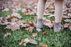 Ευτυχές παιχνίδι μικρών κοριτσιών με τα φύλλα φθινοπώρου στο πάρκο Στοκ Εικόνα