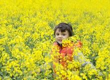 Ευτυχές παιδί στο συναπόσπορο Στοκ φωτογραφία με δικαίωμα ελεύθερης χρήσης