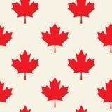 Ευτυχές πρότυπο ιπτάμενων ημέρας του Καναδά Η σημαία του Καναδά με τα πυροτεχνήματα για γιορτάζει τη εθνική μέρα του Καναδά Στοκ εικόνα με δικαίωμα ελεύθερης χρήσης
