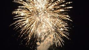 Ευτυχές πυροτέχνημα εορτασμού απόθεμα βίντεο